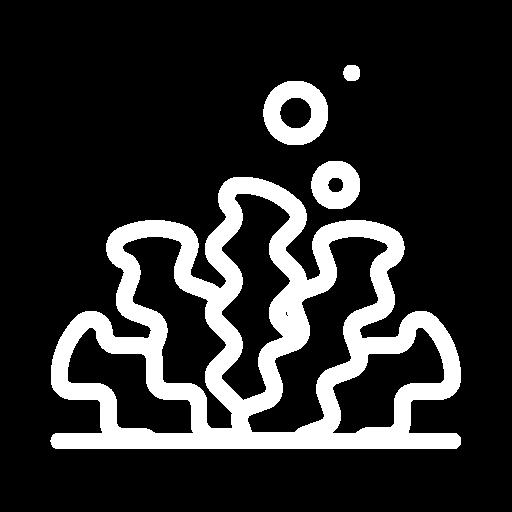 5.9 Species connectivity